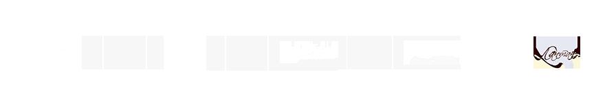 logos mob 1 - Аппарат для чистки лица HydraFacial® - купить в Москве